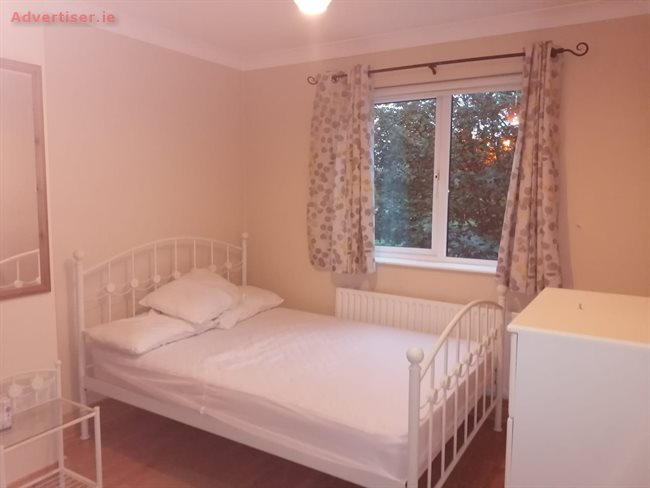 huge selection of acbc6 720b4 ROOM TO RENT IN A SPACIOUS WELL CARED FOR THREE BED HOUSE ...